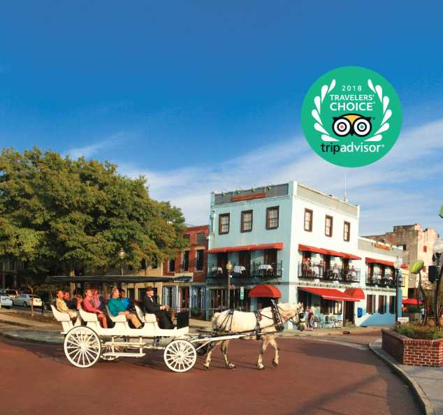 Horse and carriage riding through downtown Wilmington