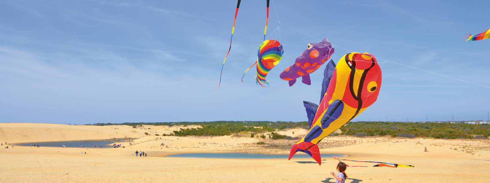discover the outer banks of north carolina