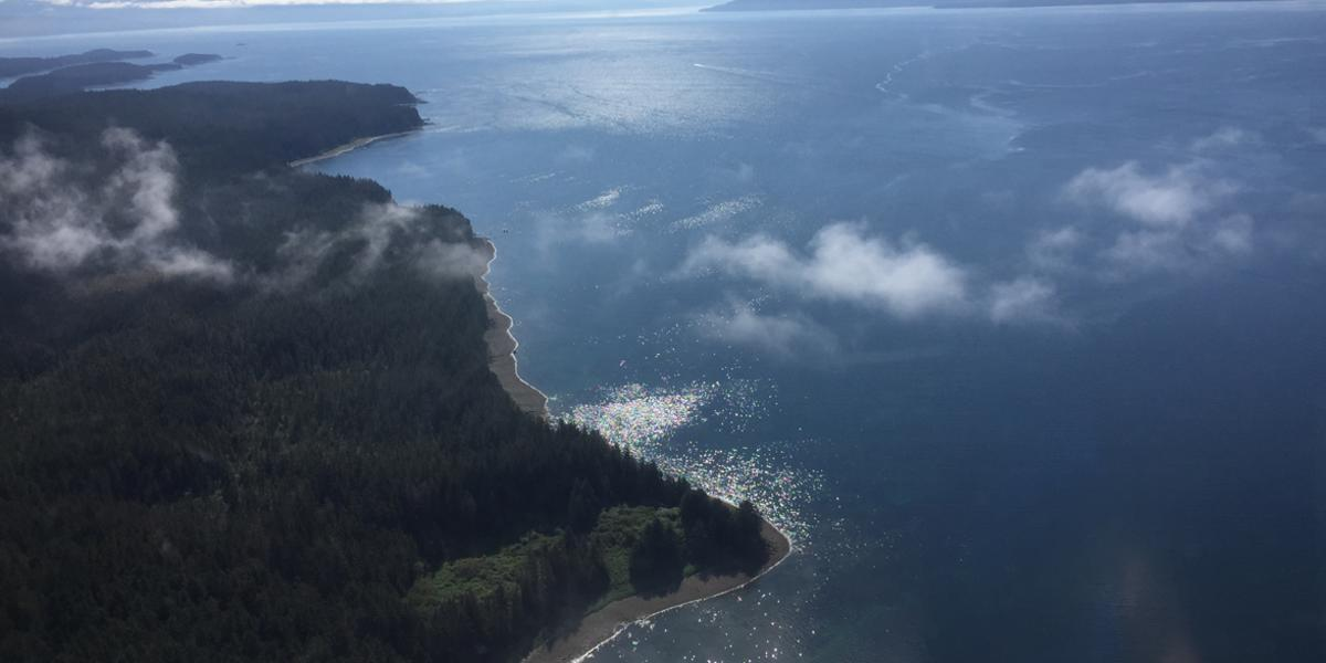 Elfin Cove Aerial Shot