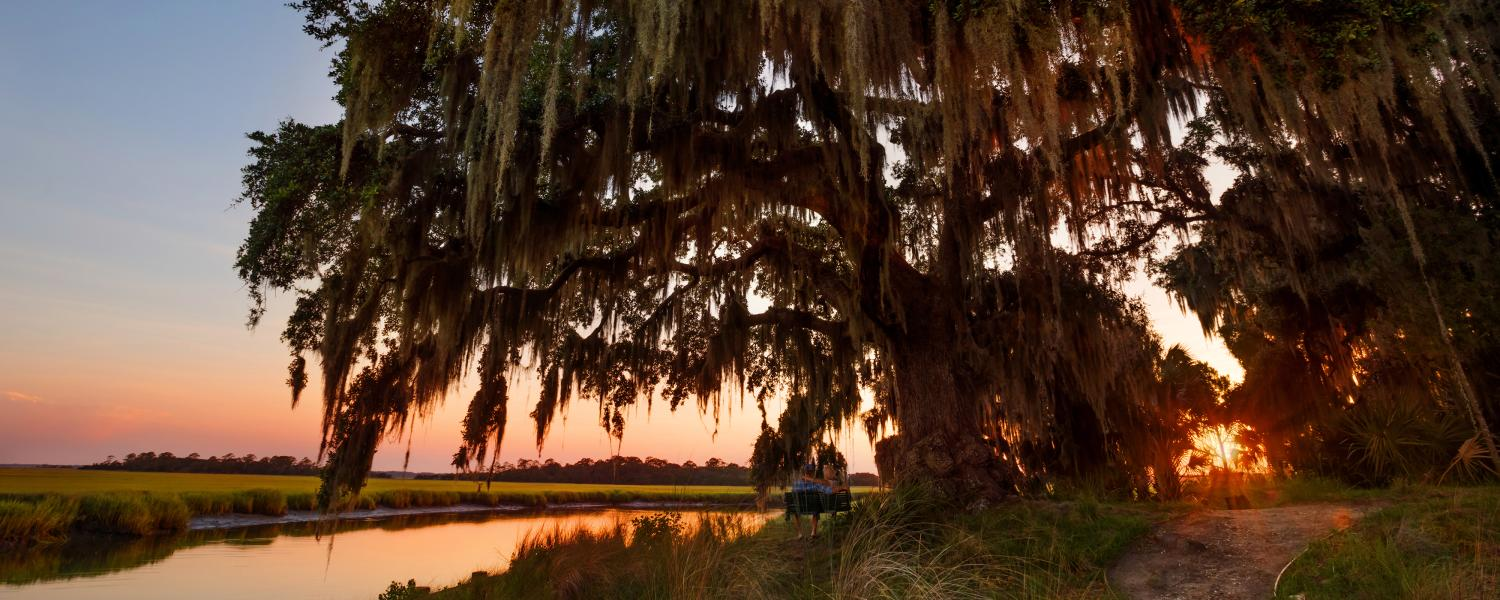 Guests take in the marsh sunset while swinging beneath a live oak tree on Little St. Simons Island, Georgia