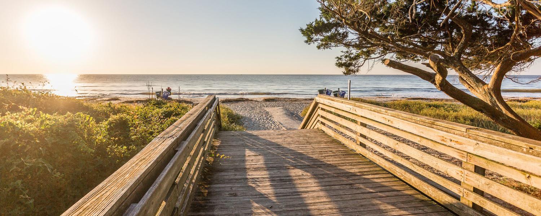 Play_Beaches_Beach FAQ
