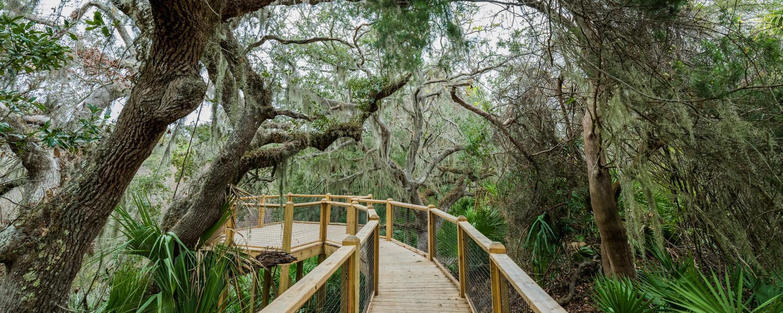 Jekyll Island Nature Trail