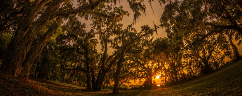 The sun sets behind the ancient live oak trees at Gascoigne Bluff on St. Simons Island, Georgia