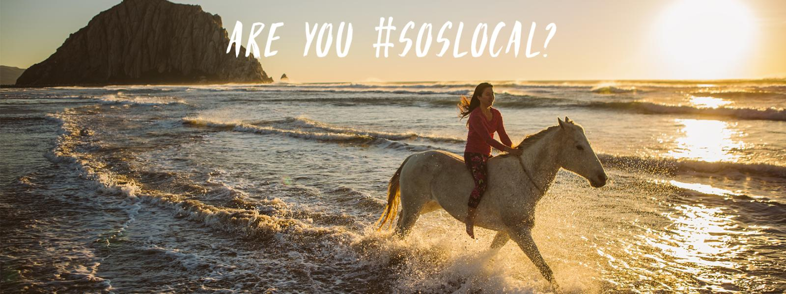 Are you #SoSLOCAL