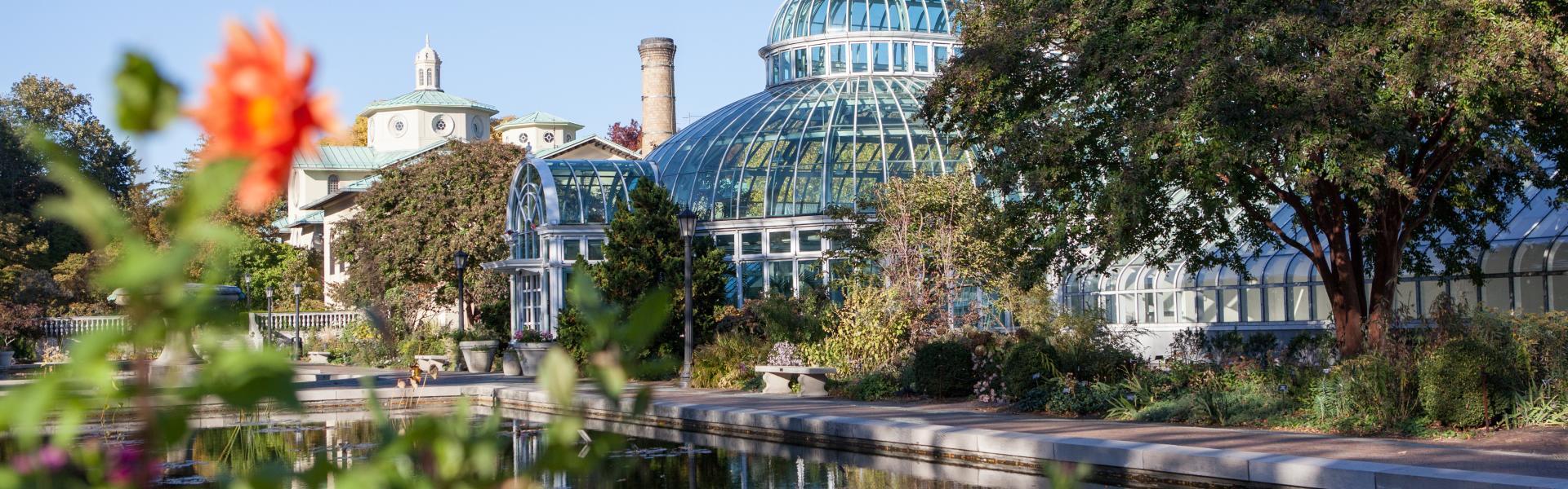 Brooklyn Botanic Garden, Greenhouse, Pond