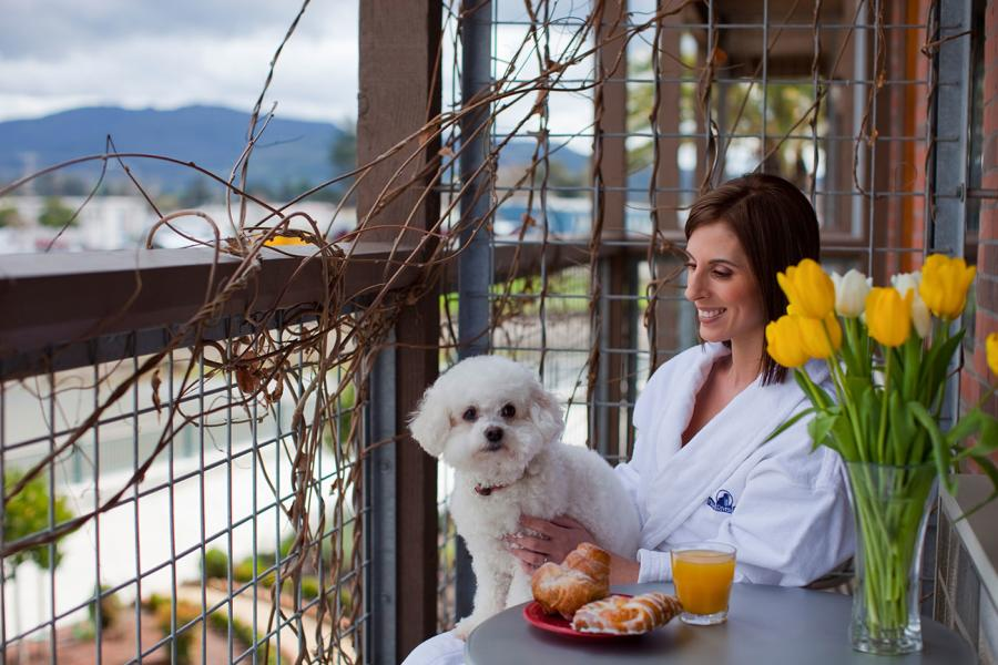 Planning A Napa Valley Getaway But Don T Want To Leave Your Pet At Home Alone Or Kennel Worry Has Plenty Of Friendly Hotels