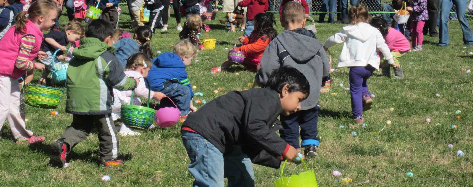 Fairfax County Nature Centers