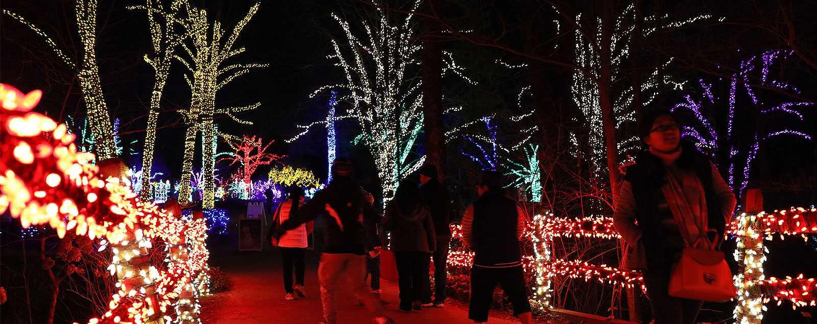 christmas light shows bull run festival more fairfax county va
