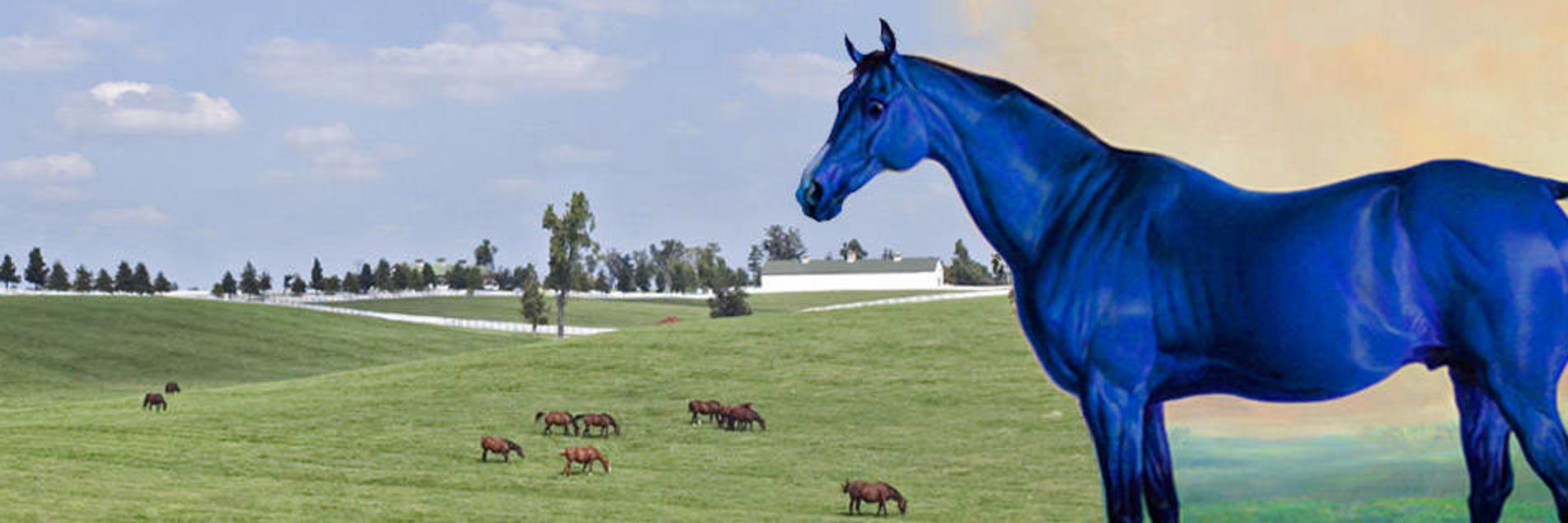 Big Lex The Famous Blue Horse Of Lexington