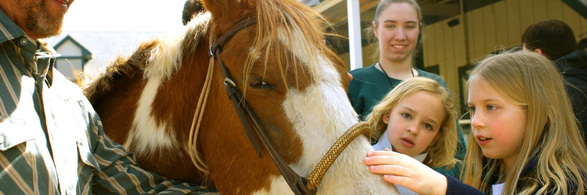 Kids Love Horses