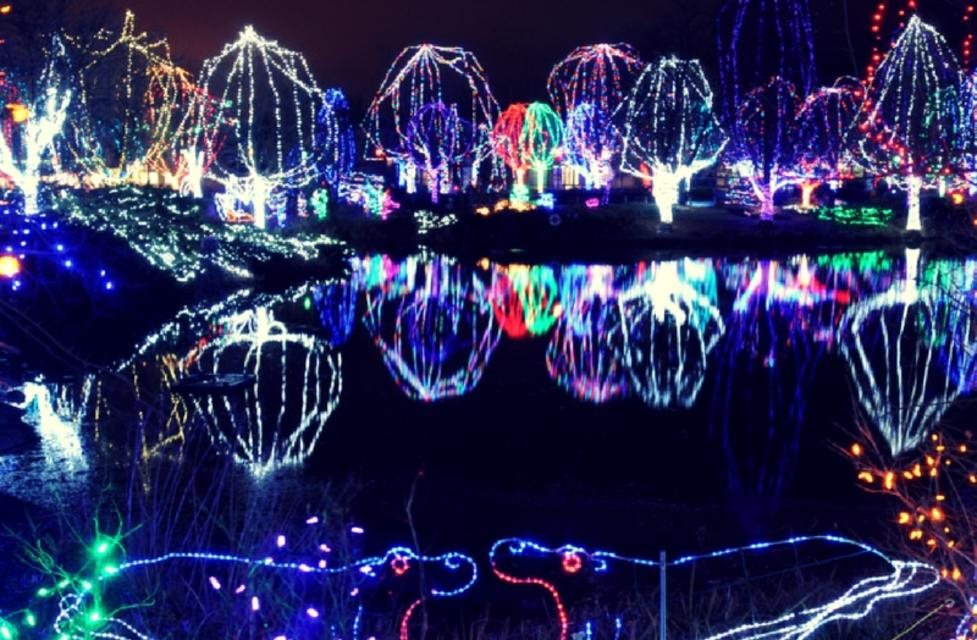 Light Up Your Winter Nights With A Trip To The Columbus Zoo U0026 Aquarium Not  Only To See The Animals, But To See The 3 Million LED Lights Scattered  Throughout ...