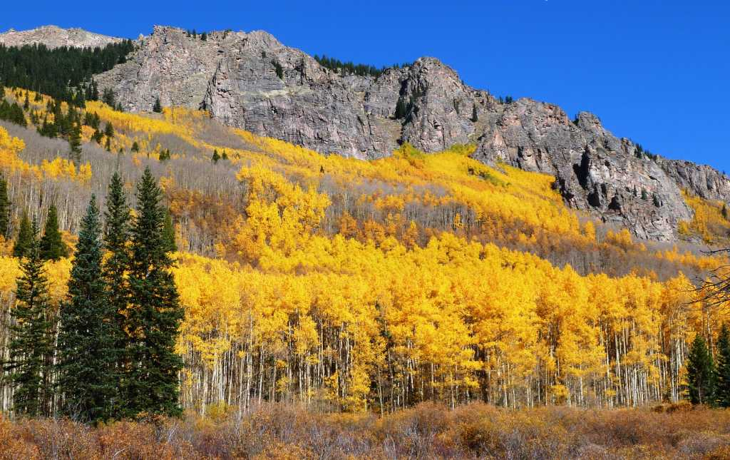 Denver Fall Foliage VISIT DENVER - 8 best places in the us to watch fall foliage