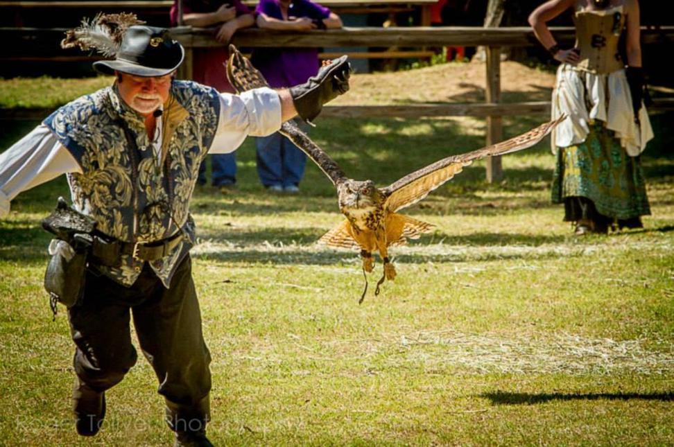 Birds of Prey - Ren Faire