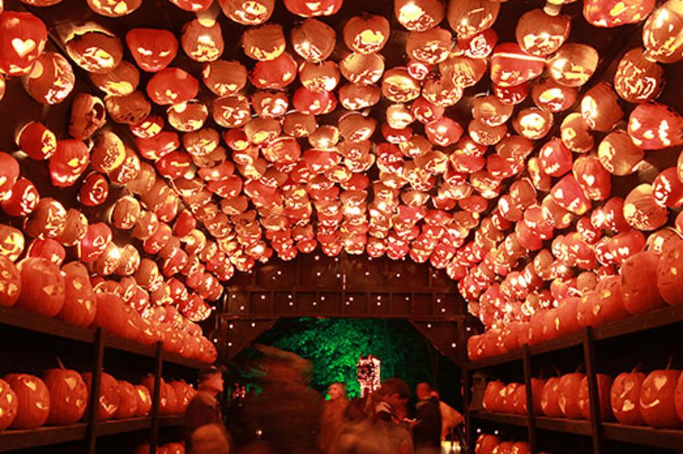 The Great Jack O'Lantern Blaze - Photo Courtesy of Historic Hudson Valley