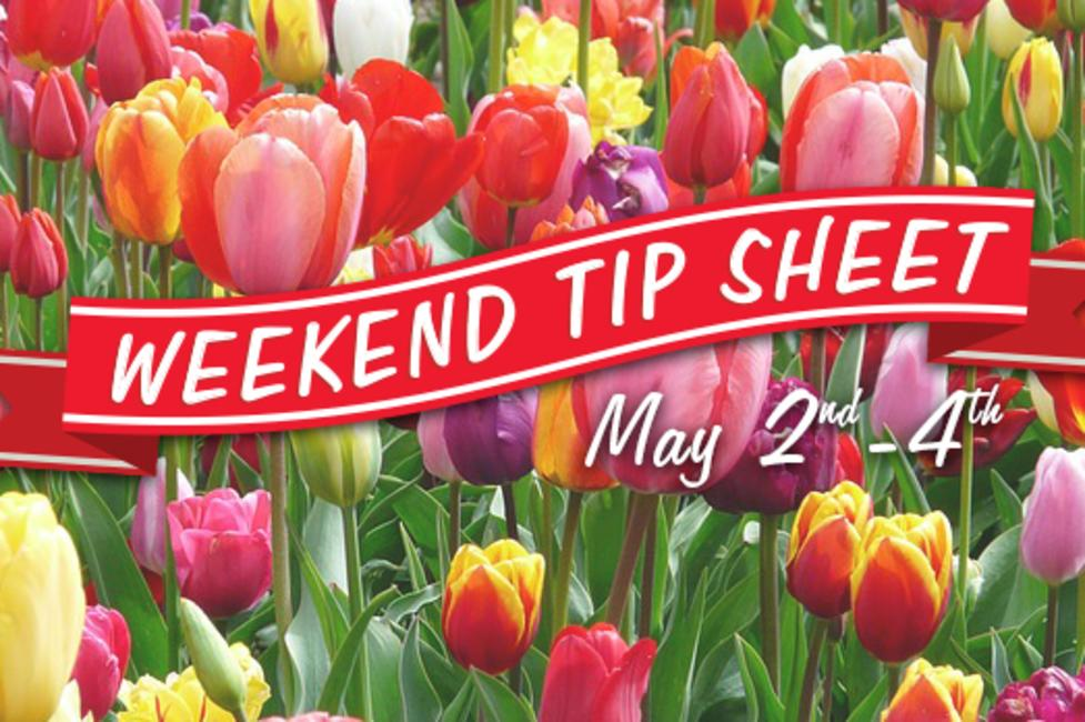 Weekend Tip Sheet 5/2 - 5/4