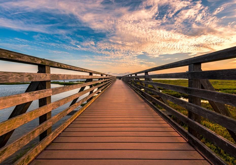 Huntington Beach Wetlands