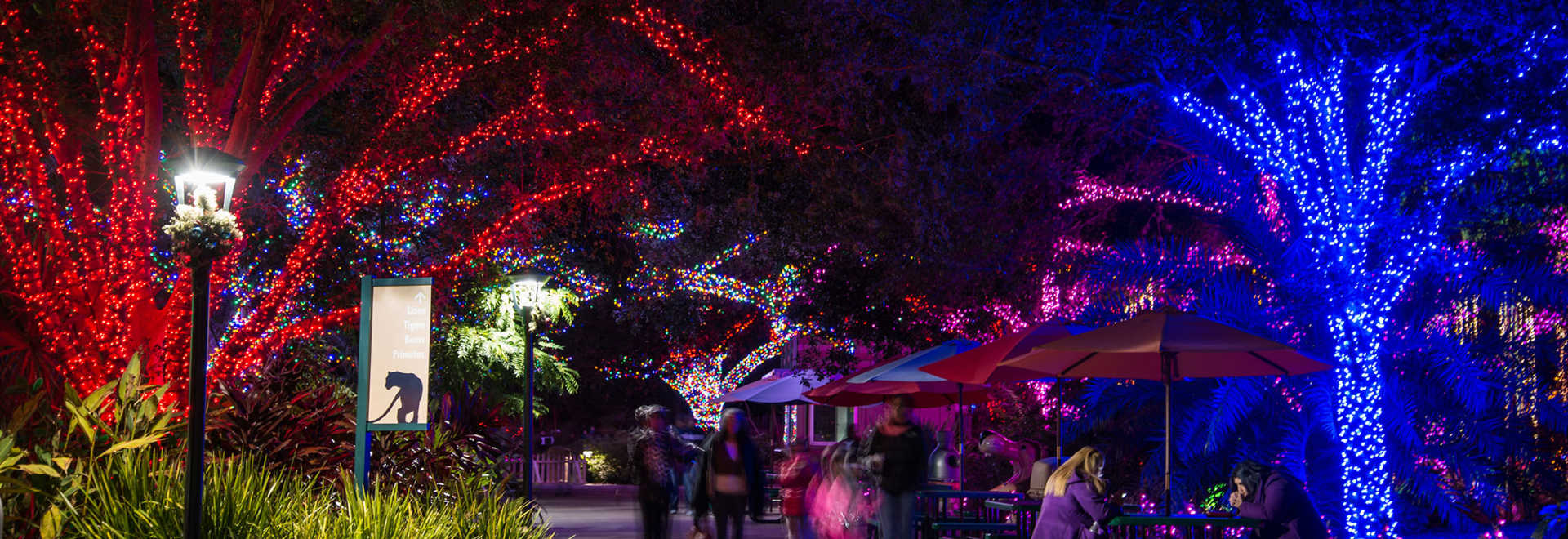 Holiday Lights in Houston | Best Christmas Display Spots