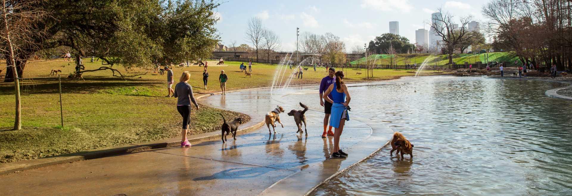 Barbara Hall Dog Park