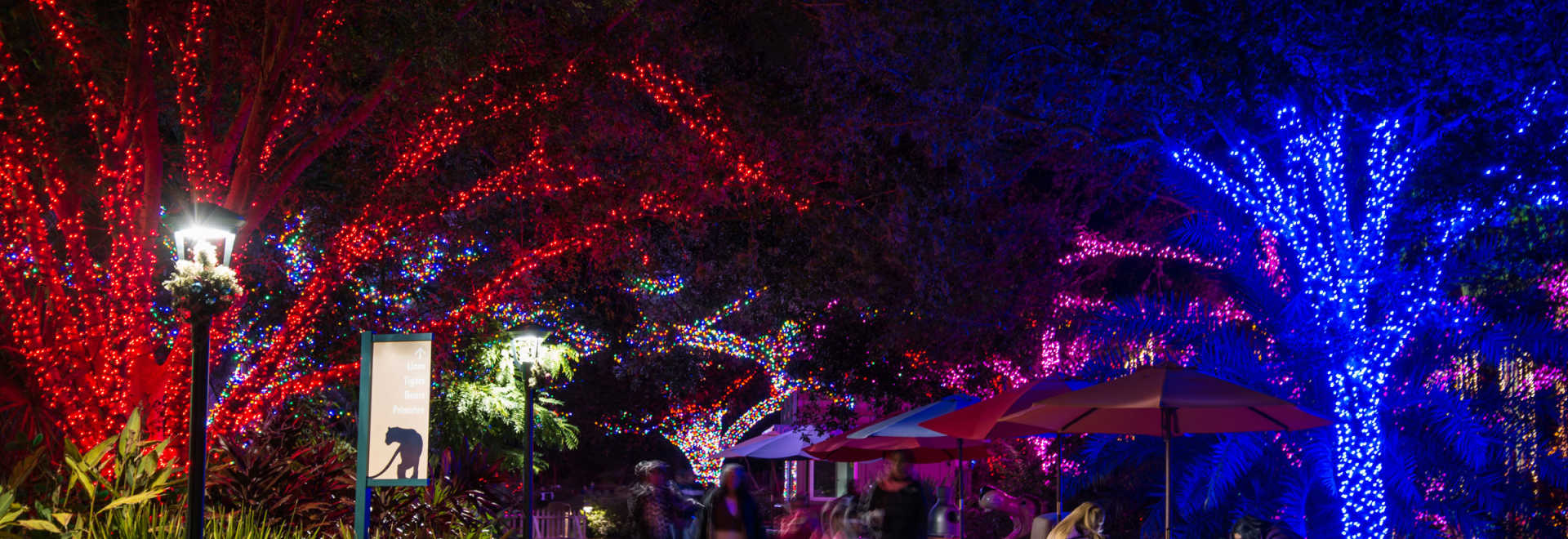 Holidays in houston find christmas events concerts festivals zoo lights solutioingenieria Images