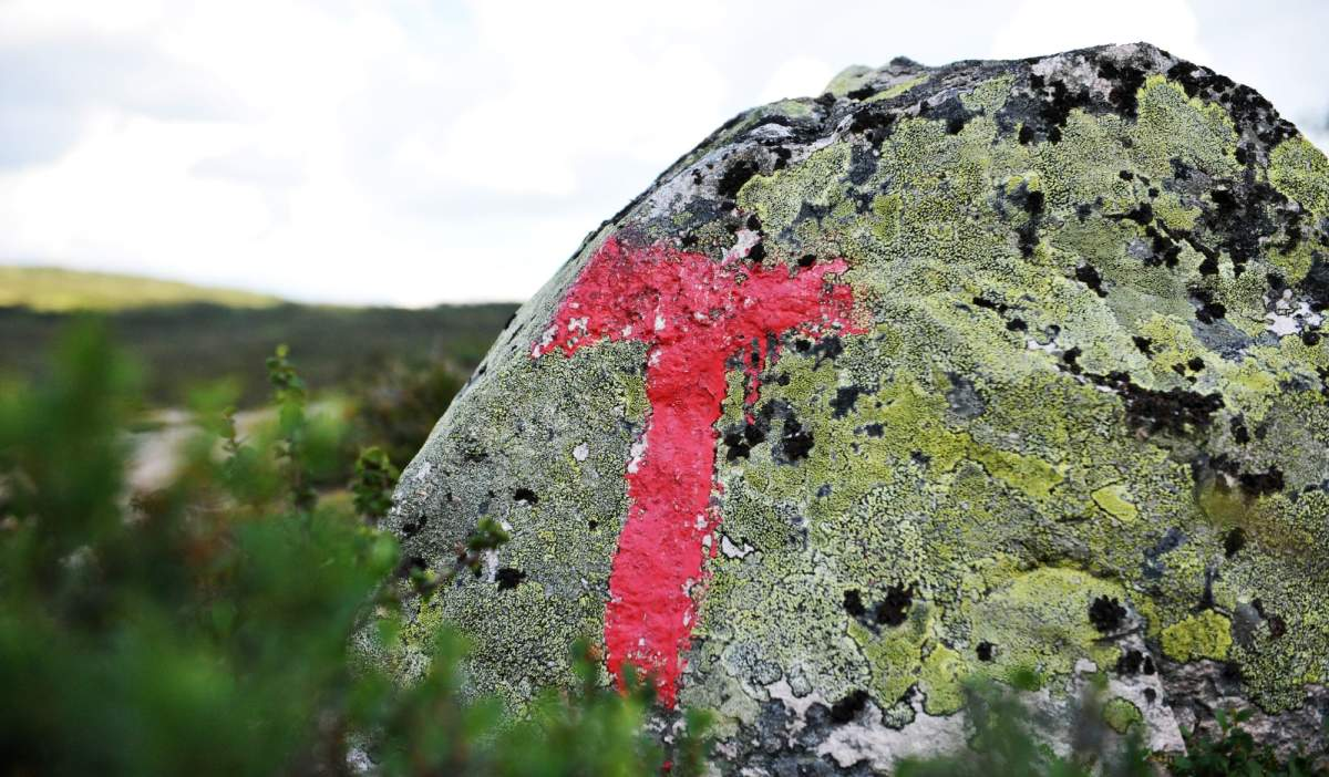 hiking in setesdal official website visitnorway com