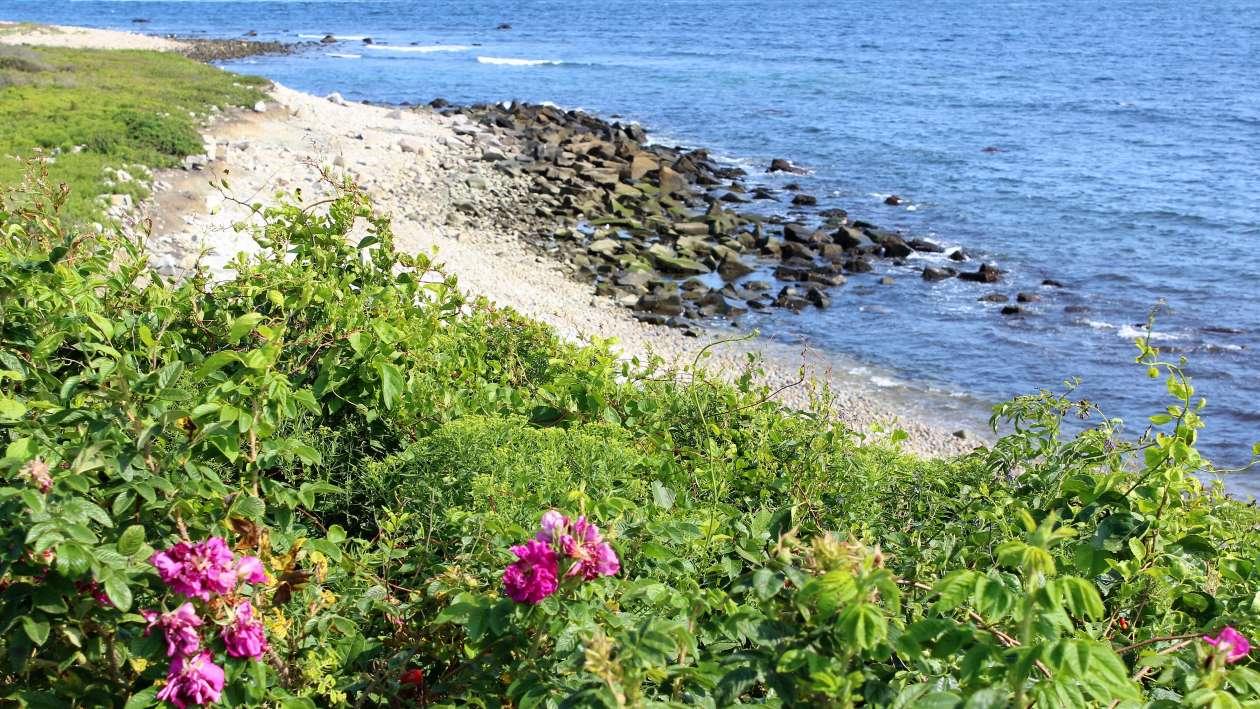 Fishermen's Memorial State Park-Narragansett-South County