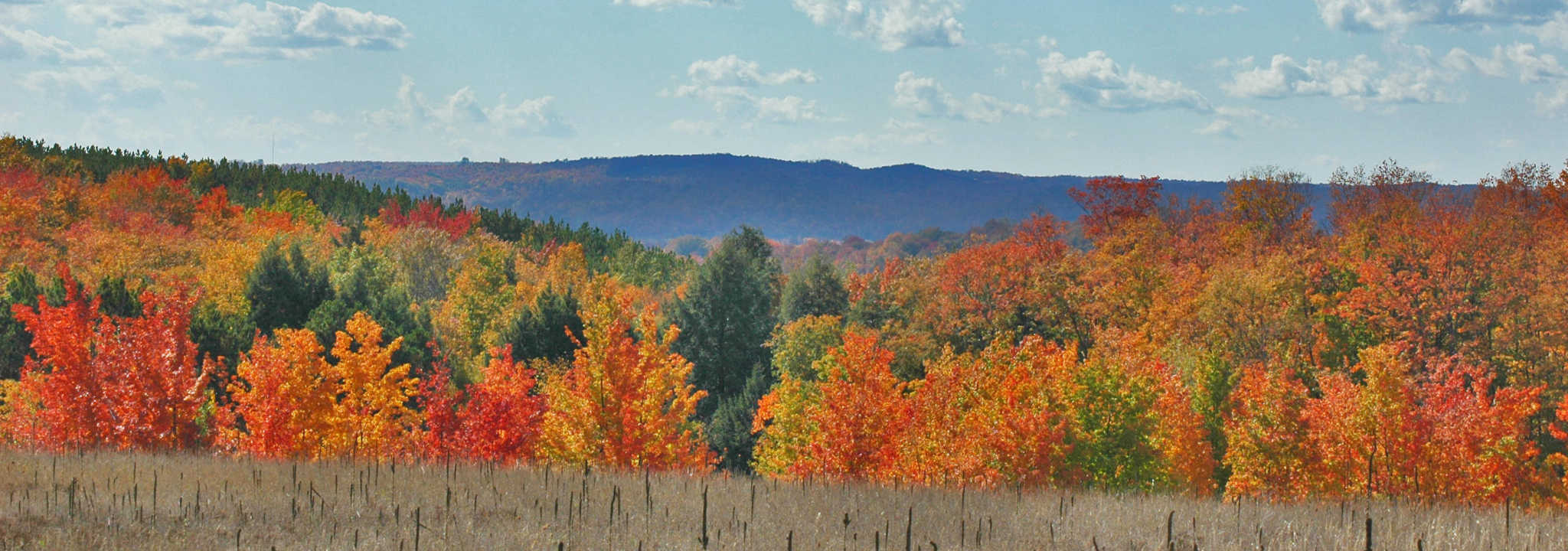 Traverse City Fall Color Tours | Fall Leaf Peeping