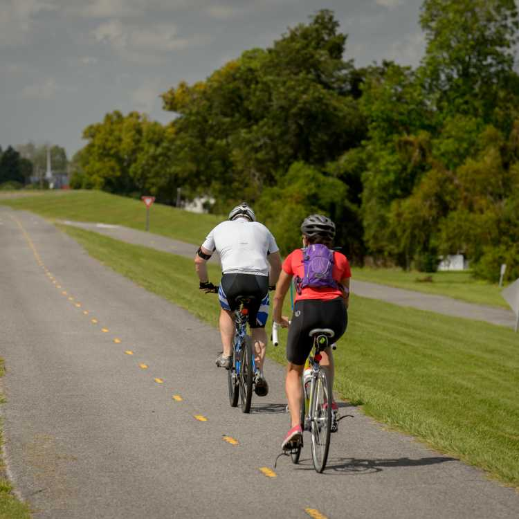 Levee Bike Path, Kenner