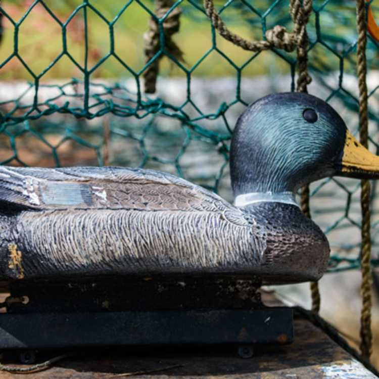 Duck hunting decoy
