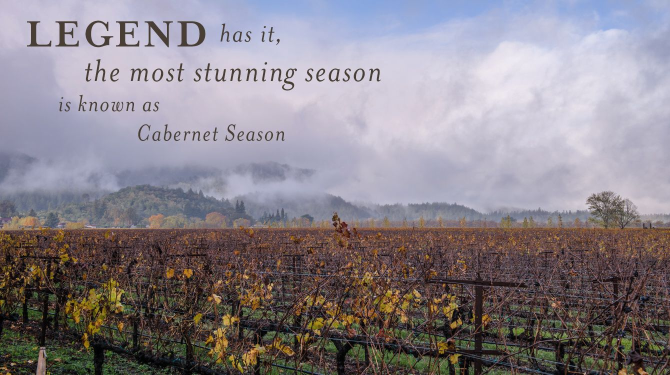 Legend has it, the most stunning season is know as Cabernet Season in Napa Valley