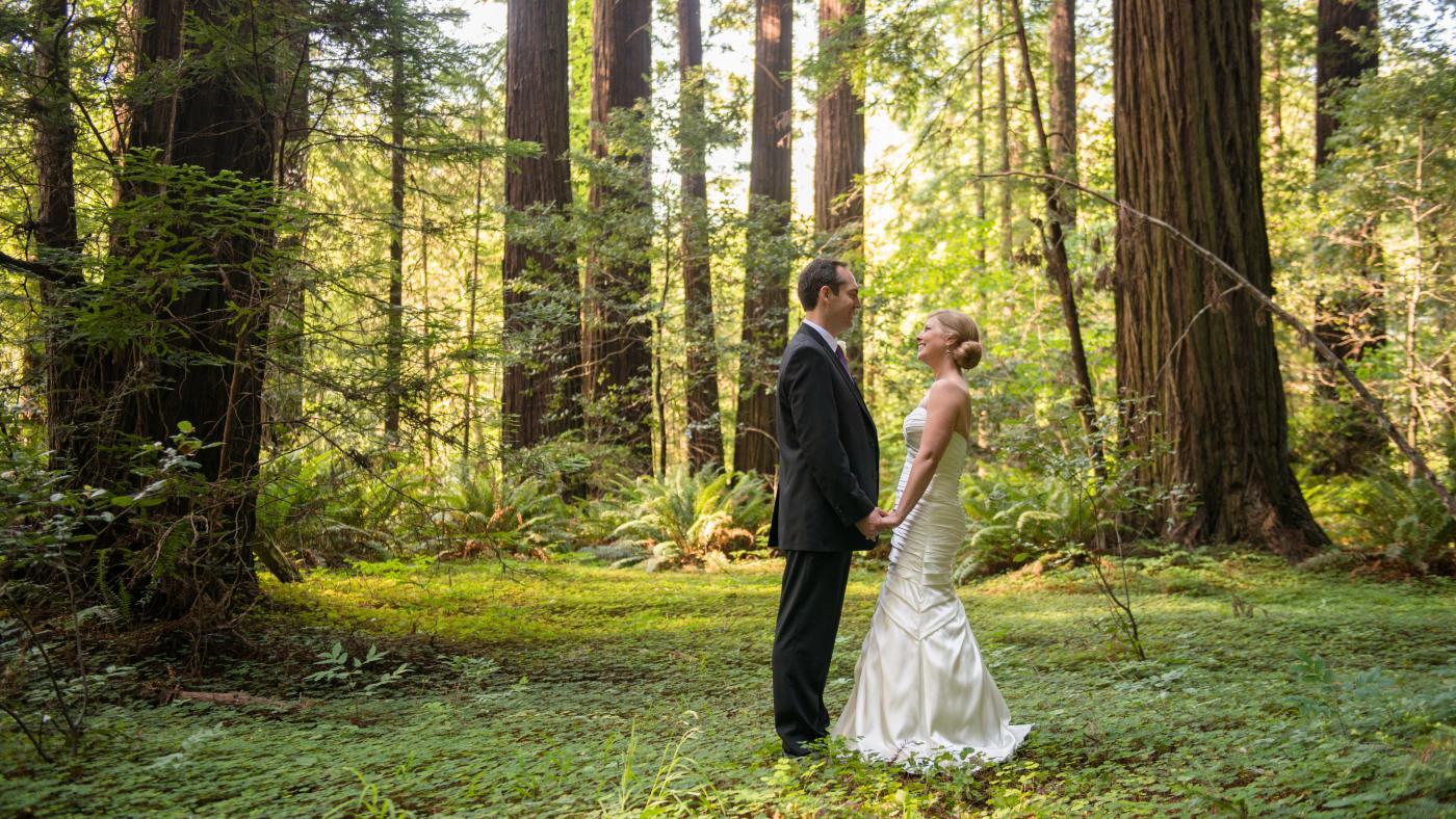 Wedding in Redwoods