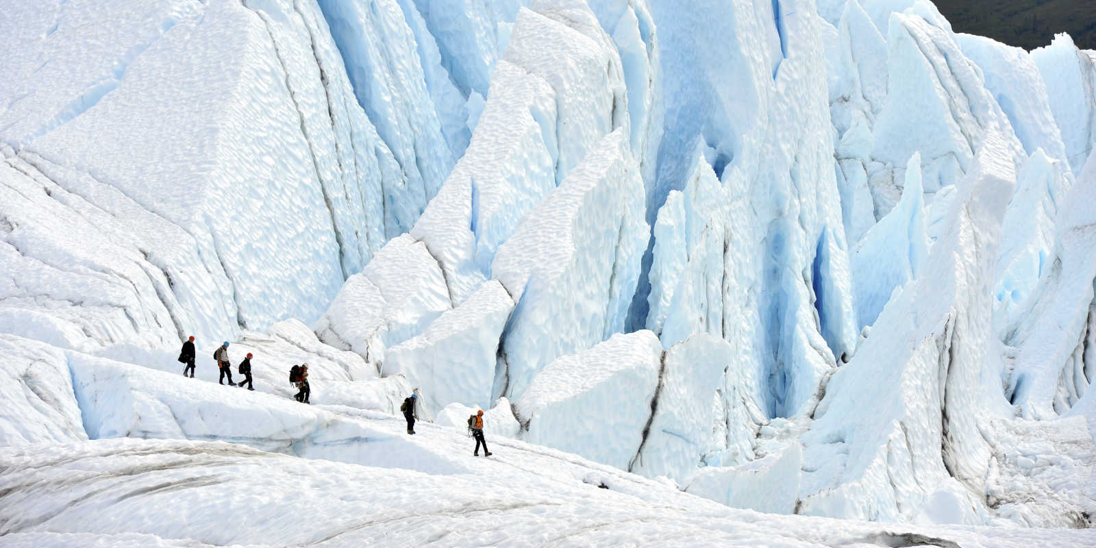 Matanuska glacier trekking