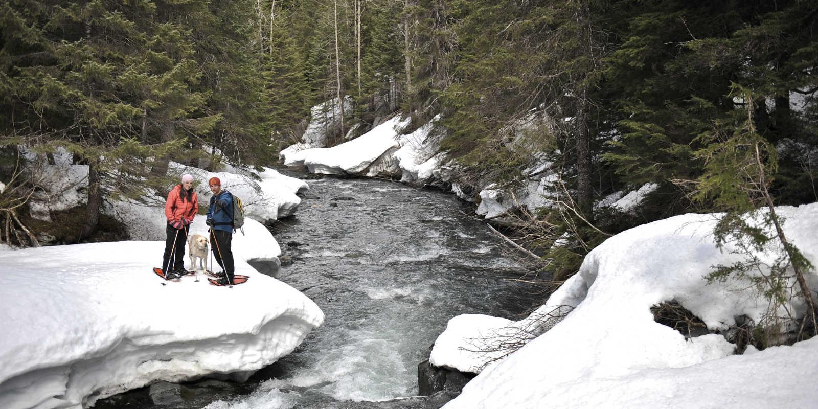 Snowshoeing Winner Creek near Girdwood in winter