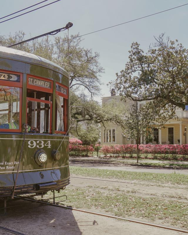 Streetcar - Uptown Spring Color - Azaleas - St. Charles Avenue