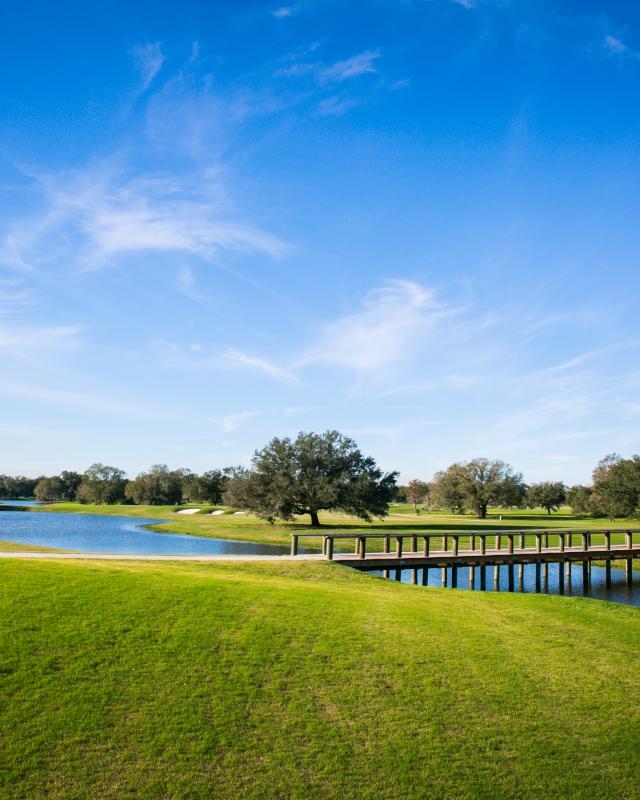 Bayou Oaks Golf Course- City Park