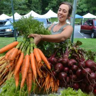 Asheville's Harvest Adventures and Recipes