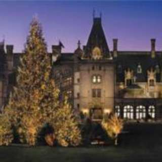 Holiday Events To Get You In the Spirit