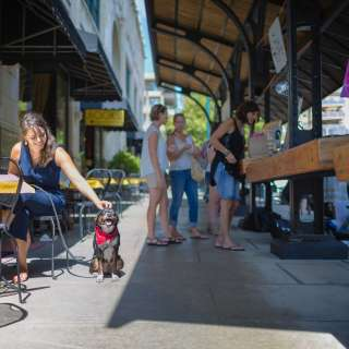 Pet Friendly Dining at the Grove Arcade