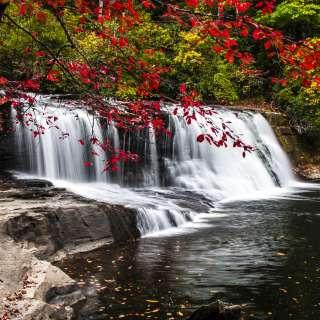 Hooker Falls in Fall