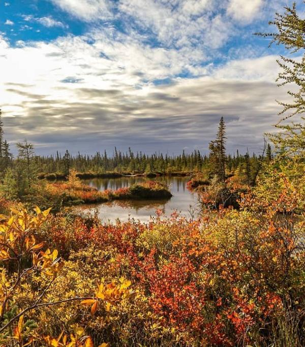 Loved fall before it was cool to love fall? Check out these Manitoba fall musts