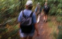 Hiking along the North - South Lake Escarpment