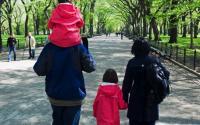 Central Park 1511