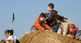 fall festivals - kids on hay bales
