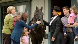 Breeds Barn at the Kentucky Horse Park
