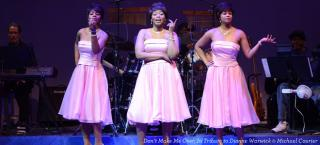 Don't Make Me Over, In Tribute to Dionne Warwick