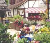 Carmel: Restaurants