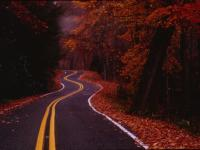 Winding Road Big