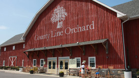 County Line Orchard Things to Do in Hobart
