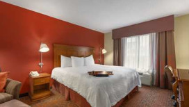 Hampton Inn Hotel Merrillville King