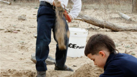 Indiana Dunes National Lakeshore Nature Play Zone