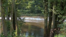 Lake County Parks Outdoors Grand Kankakee Marsh Lowell